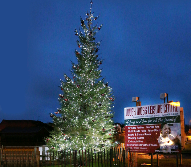 The Christmas tree erected by the council outside Lough Moss Leisure Centre in Carryduff