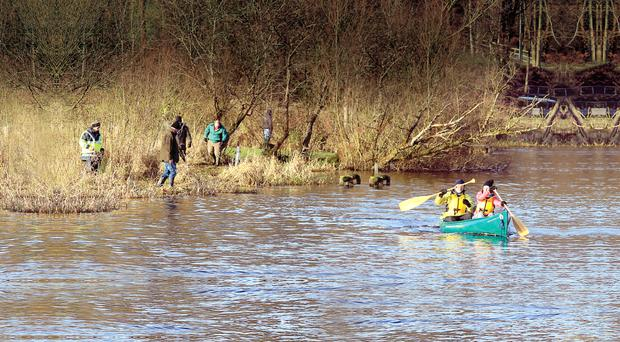 Volunteers on day 19 of the search for Kieran McAree