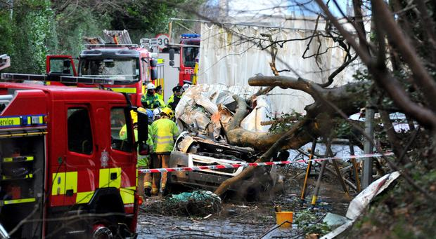 The scene of the tragedy in Lisburn where a man was killed when a tree fell on his van