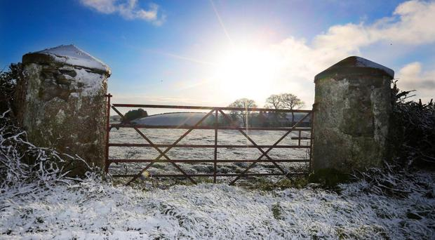 A low sun rises over a gate in the Moneyrea countryside