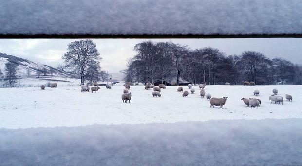 Parts of the UK could see significant snowfall