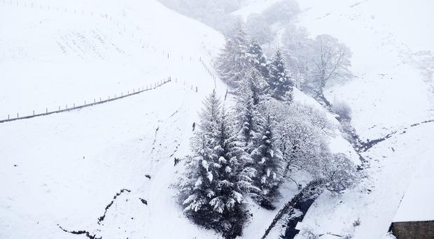 Trees by Baitings Reservoir near Ripponden, which is covered in snow, as the cold snap continues