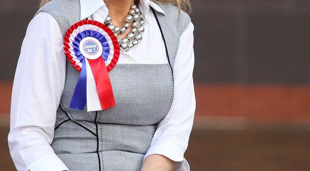 The UUP's Jo-Anne Dobson