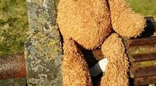 The teddy bear that was left behind at Castle Ward