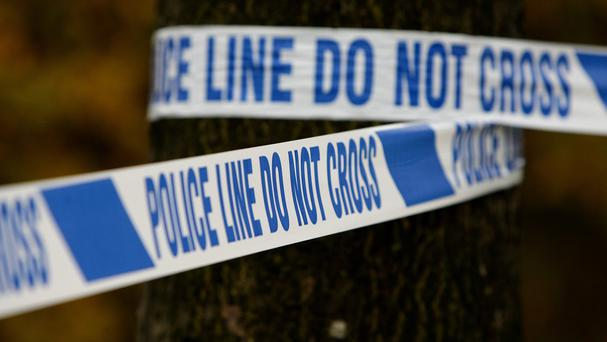 The discovery of a man's body in a car boot in south Belfast has prompted a murder probe