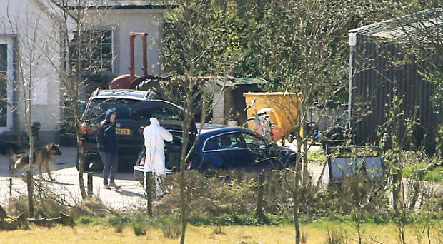 Forensic officers yesterday at the home in Fermanagh where the dogs died