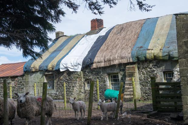 The 300-year-old thatched cottage that was damaged in recent storms in Magilligan