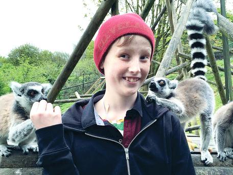 Joshua enjoying a family day out at Belfast Zoo before his latest operation