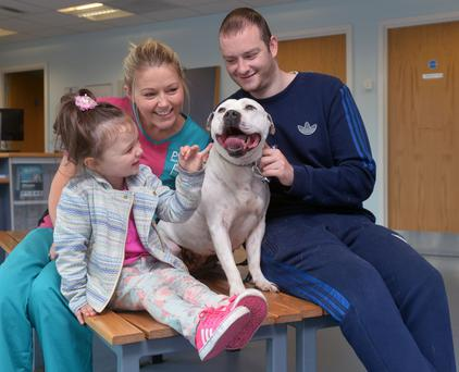 PDSA nurse Gemma Vance reuniting Eoin Markey and his daughter Alexis with their dog 'Mon'