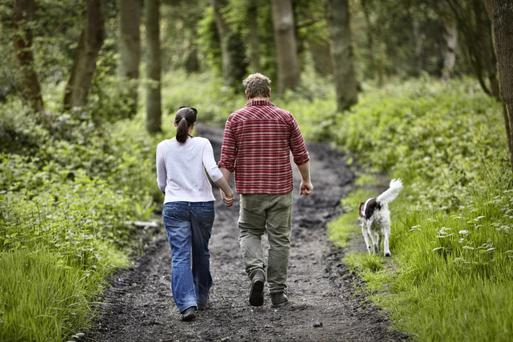 Dog walking was to be banned in nearly 100 public spaces