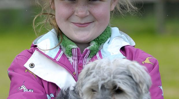 Alex Phillips and Raven the Dog from Armagh at the 2015 Northern Ireland Countrysports Fair