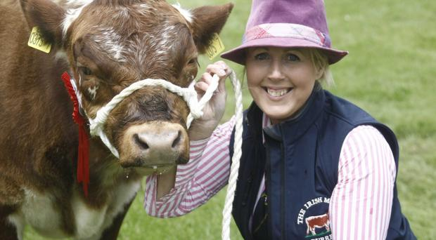 Michelle McCauley shows off her shorthorn cow at Lugan show which was held on Saturday