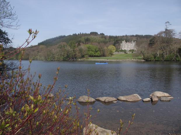 Castlewellan Forest Park, the scene of the spot where the man took a late-night ride on a horse