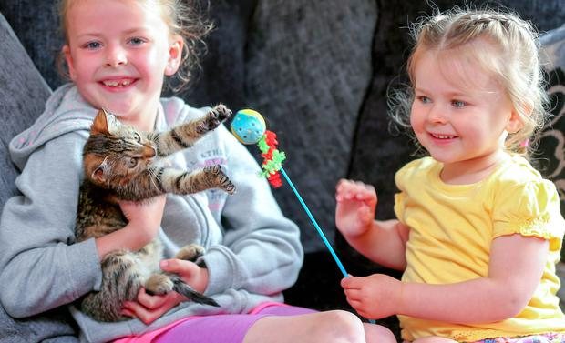 Billy having fun with his delighted new owners, Katie (8) and Ruby Reid (2)