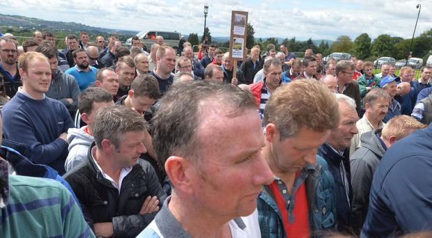 Dairy farmers protest at Stormont yesterday