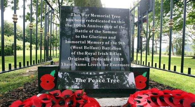 The memorial erected at an oak tree in Woodvale Park which was planted in 1919 to remember those killed in the First World War