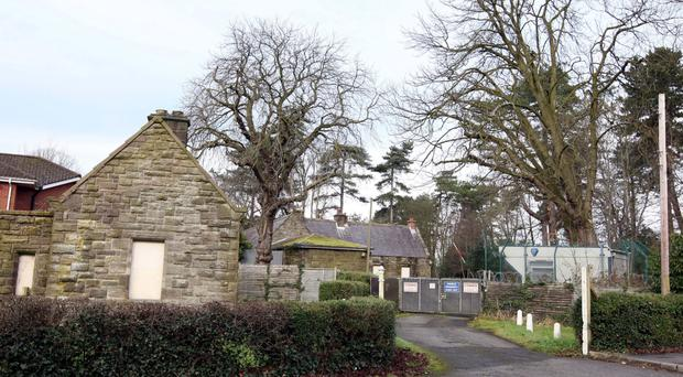 The new owner of Ormiston House wants to turn it back into a home