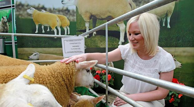 Michelle O'Neill said that more must be done to help dairy farmers