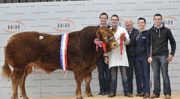 Henry Savage with sons Henry, Benedict, Phelim and Dermot, and their award-winning bull Jagger