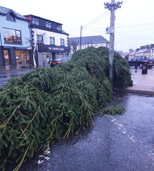 Mystery surrounded the felling of Magherafelt's Christmas tree on Sunday