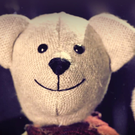 The teddy featured in Ballymena's internet ad