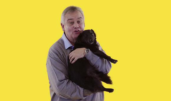 Eamonn Holmes is an animal lover