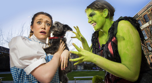 A budding Toto (aka Teddy), Dorothy (Maria Sweeney) and Wicked Witch of the West (Jen Fahy) help launch the search for Toto