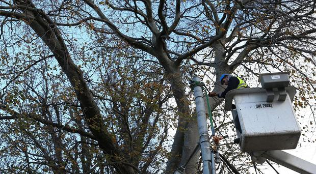 ESB staff work to repair damaged power lines