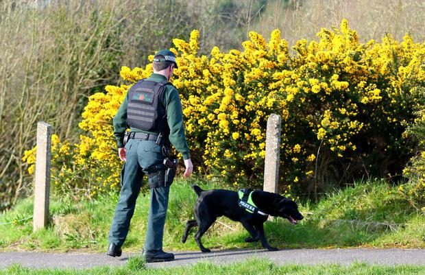 Deadly danger: Semtex was in short supply for dog training