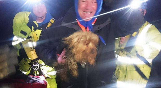 Owner and dog are reunited after the clifftop rescue operation