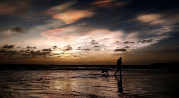 A dog walker on the east coast near Whitley Bay, Northumberland, as rare Nacreous clouds form over the coastline