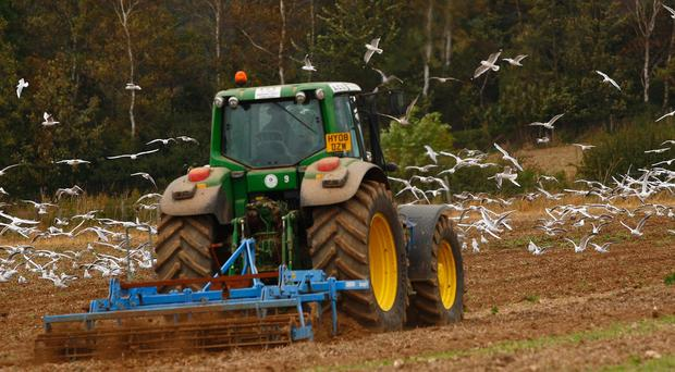 The firm helps farmers cope with the demands of the digital age