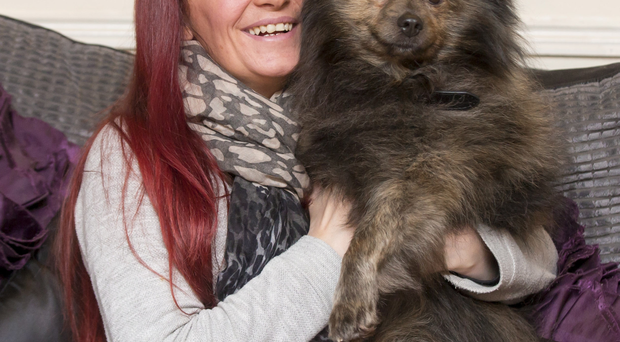 Wonder dog: Deirdre Walsh with Gizmo