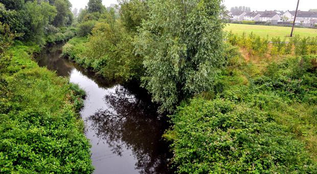 The Department of the Environment (DoE) is investigating reports of pollution in the River Enler in Co Down