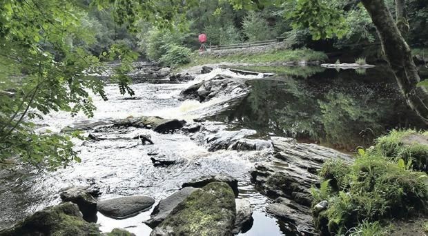 Northstone (NI) Ltd, of Kingsway, Dunmurry, Co Antrim, was handed the punishment at Limavady Magistrates Court for polluting the River Roe, a protected Special Area of Conservation