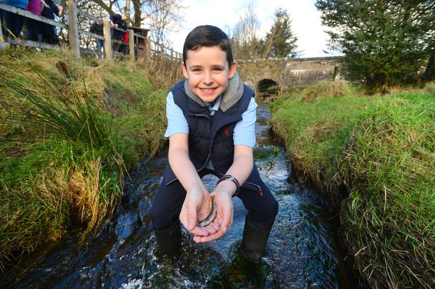 Daniel Hargney releases one of the trout into the Ballinderry River