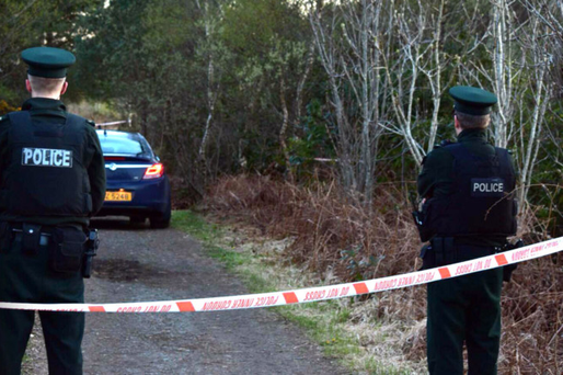 Police at the scene where a serious sexual assault was carried out at Peatlands Park, Dungannon