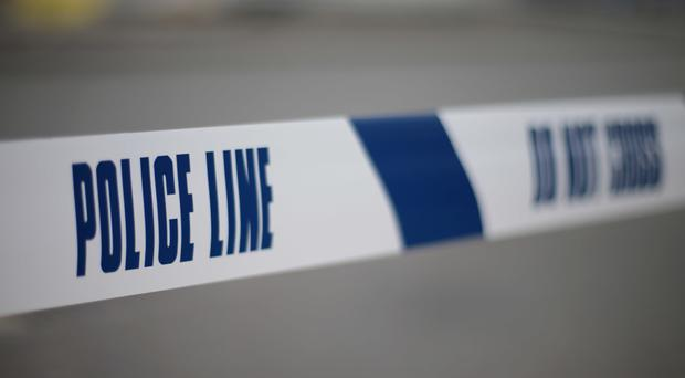 The devices were found in the Highmoor Road area of Londonderry on Thursday