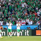 Northern Ireland fans cheer the players despite defeat to Wales in Paris