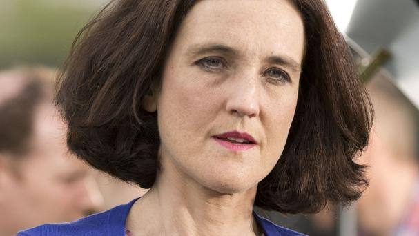 Northern Ireland Secretary Theresa Villiers has said only the Westminster government has the final say on Brexit
