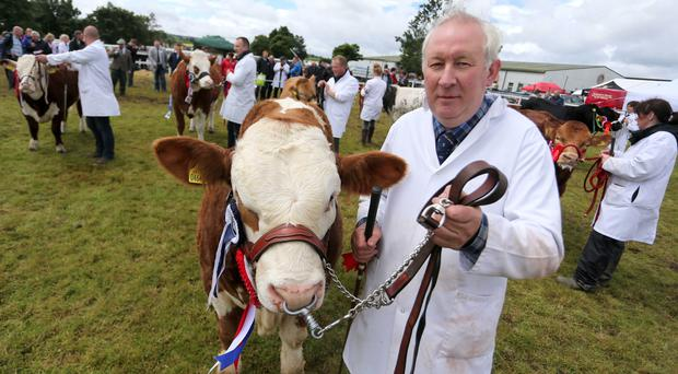 Overall show champion Robert Forde with his Simmental at Omagh Show on Saturday