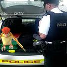 Pokemon in a police patrol car