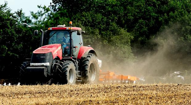 Ulster Farmers' Union deputy president Victor Chestnutt said plans in the US to relax restrictions on sheep meat and live imports will be welcomed by producers in Northern Ireland