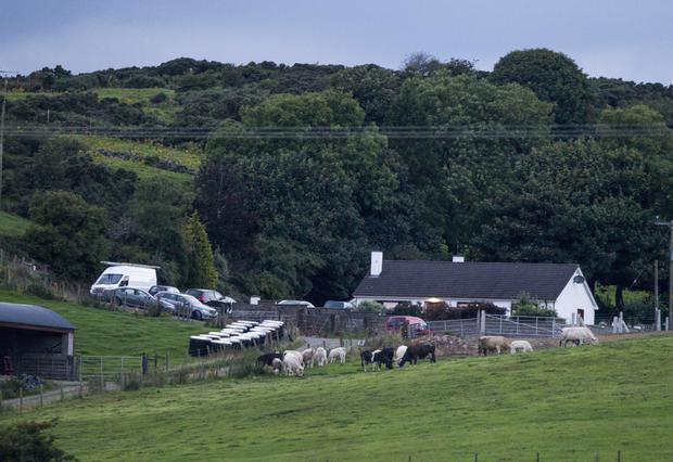 The scene at the farm close to Silverbridge in south Armagh