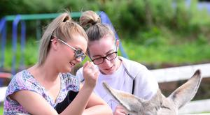 Two young women make friends with a donkey on the first day of the Auld Lammas Fair, which drew huge crowds to Ballycastle