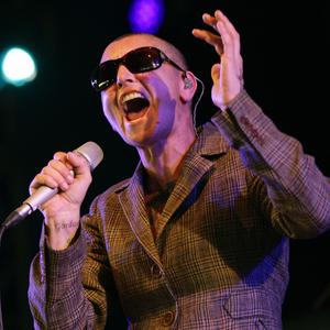 Sinead O'Connor paid out 160,304 euro for the under-declaration of PAYE and PRSI following an audit