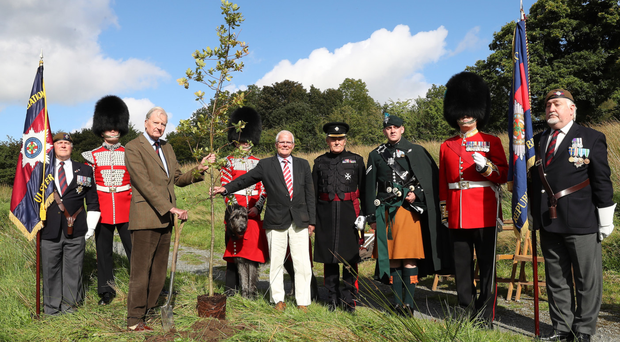 Irish Guards from north and south came together at the Woodland Trust's Brackfield Wood