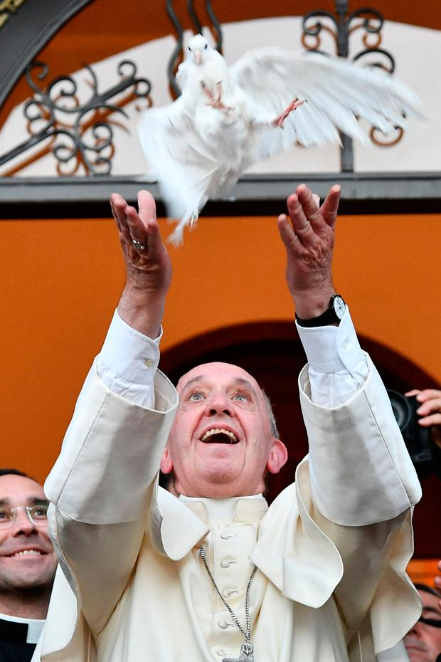 Pope Francis releases a dove at the Church of St Simon Bar Sabbae in Tbilisi, Georgia, yesterday