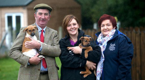 Councillor James Baird, Karen Matthews of Almost Home Animal Rescue, and Joanne MacAskill, senior dog warden, with two of the dogs