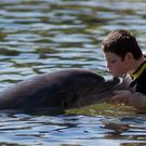 Harley Richardon, 12, from Wimborne, enjoys a swim with a dolphin